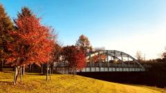 橋のある公園