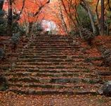 京都・浄住寺