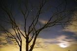 木枯らし吹く夜