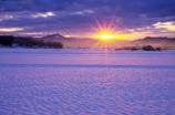 雪田んぼからの眺め