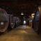醗酵室の大樽