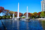 Colored leaves and fountain