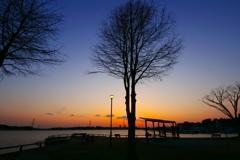 夕刻の手賀沼公園