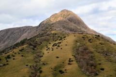 金太郎さんの山