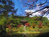 円成寺庭園