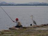 釣れますか。
