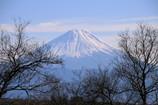 天狗様の正月富士