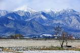 冬山と冬柿