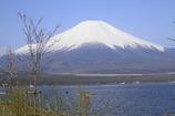 湖畔の富士山