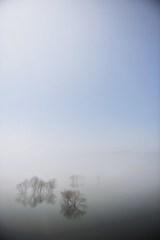 濃霧のカタルシス