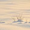 氷雪の海原16時