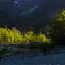 RICOH IMAGING PENTAX K-3 IIで撮影した(萌黄色)の写真(画像)