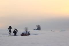 靄る冬の朝
