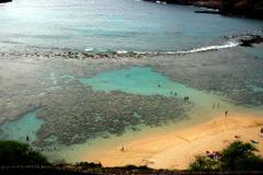ハナウマビーチ