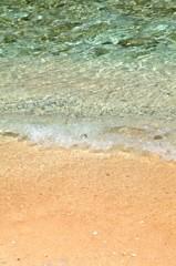 Coco Palm Garden Beach Wave 4