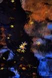 晩秋のミラージュⅡ