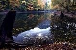深秋のみちのく池
