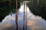 朝凪の自然湖