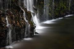 蛇骨川の伏流水