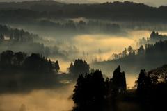 黄金の 霧海