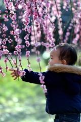 ちいさな春を手に取ってみよう!