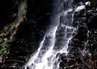 NIKON NIKON D850で撮影した(厳 壁)の写真(画像)