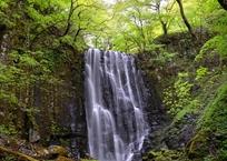 深壑の緑雨