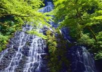 龍双坊の修行滝