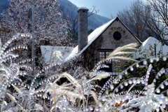 Crystal な Winter