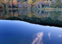 NIKON NIKON D850で撮影した(清晨の木戸池)の写真(画像)