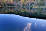清晨の木戸池