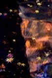 晩秋のミラージュ