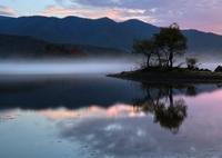 NIKON NIKON D850で撮影した(紫 雲)の写真(画像)
