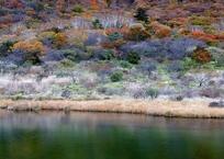 覚満小尾瀬の秋