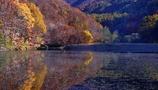 大沢沼の秋