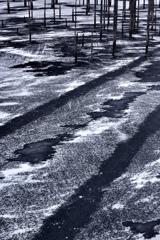 Winter rail wayⅡ