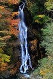 深秋の渓Ⅱ