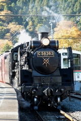 Steam Locomotive The Paleo Express