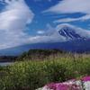 富嶽よ永遠に~大石公園1