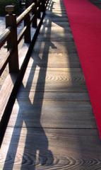 影-44/A railing and scarlet carpet