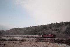 雪景色をゆく