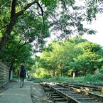 NIKON NIKON D700で撮影した(indy)の写真(画像)
