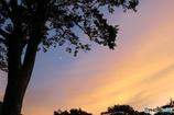 高原の夕べ