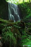 滝と緑とⅠ