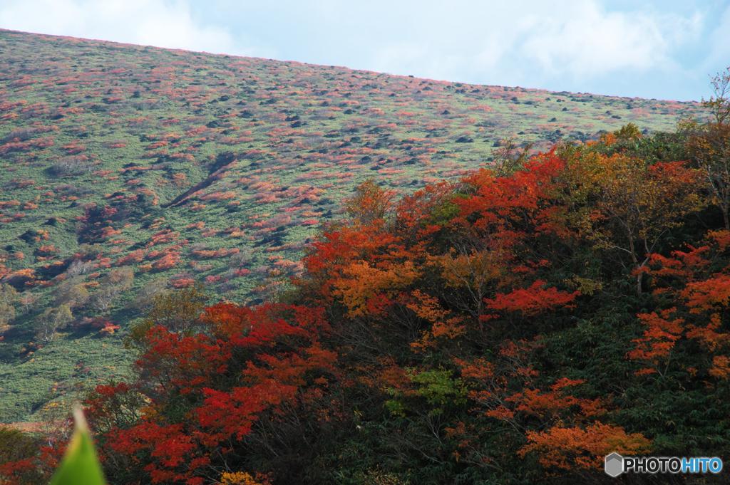 秋駒紅葉狩りⅠ