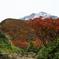 紅葉とお山Ⅰ