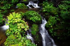 安代・不動の滝Ⅴ