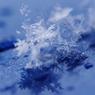 雪晶模様Ⅳ