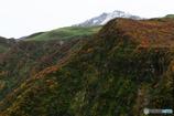 紅葉とお山Ⅱ