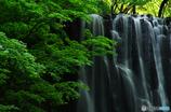 滝と緑とⅡ